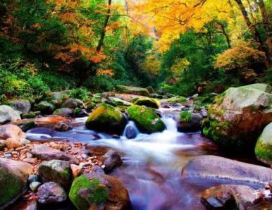 十月四川,江山如画,简直是美翻了!