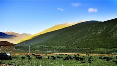 川藏线旅游转视角遇见西藏的美